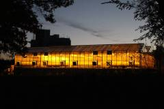 greenhouse-night