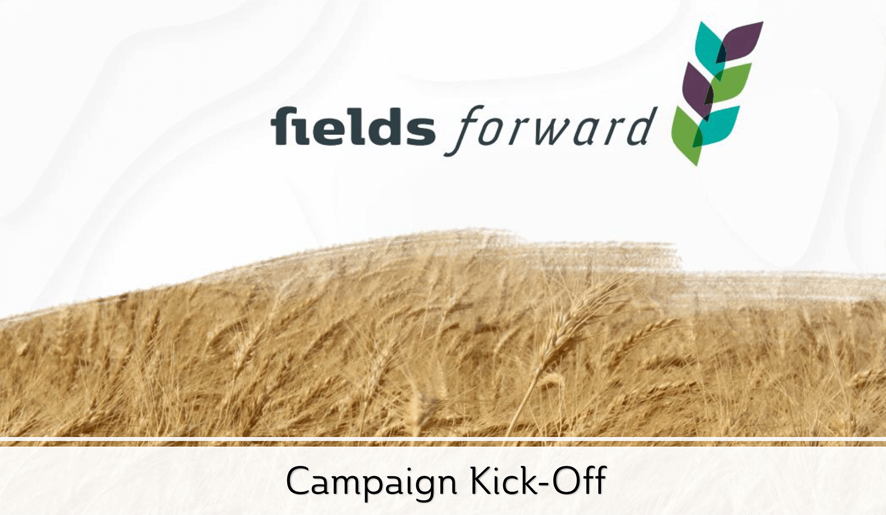 Image: Fields Forward Campaign Kickoff.